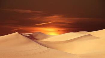 5歲男童阿根廷沙漠走失 吃草果腹撐24小時!