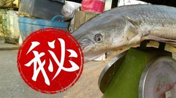 鱷頭魚身!泰國怪魚現蹤 存在地球1億年