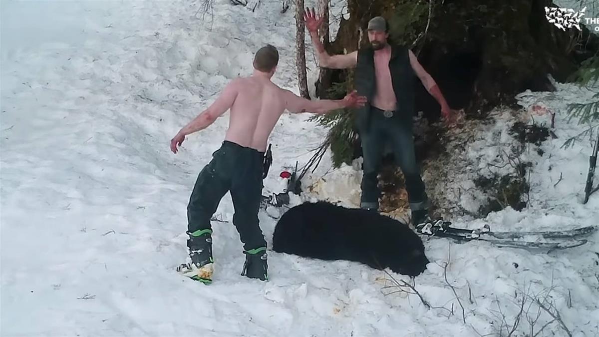 射殺冬眠黑熊母子 父子滿手鮮血擊掌…