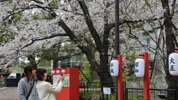第248個年號!日本公布新年號「令和 」