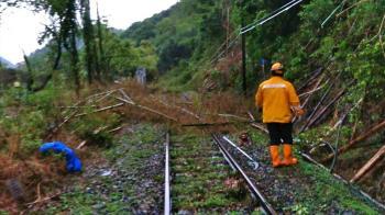 豪雨狂炸!集集路樹倒 台鐵一度無法通行