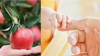 世界迷你嬰僅1顆蘋果重 奇蹟出院!