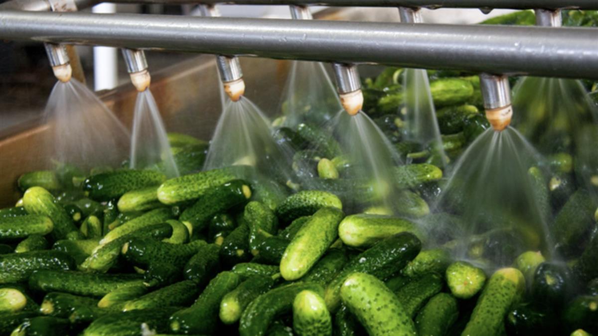 食品廠用漂白水洗菜 居家不能學!理由曝光