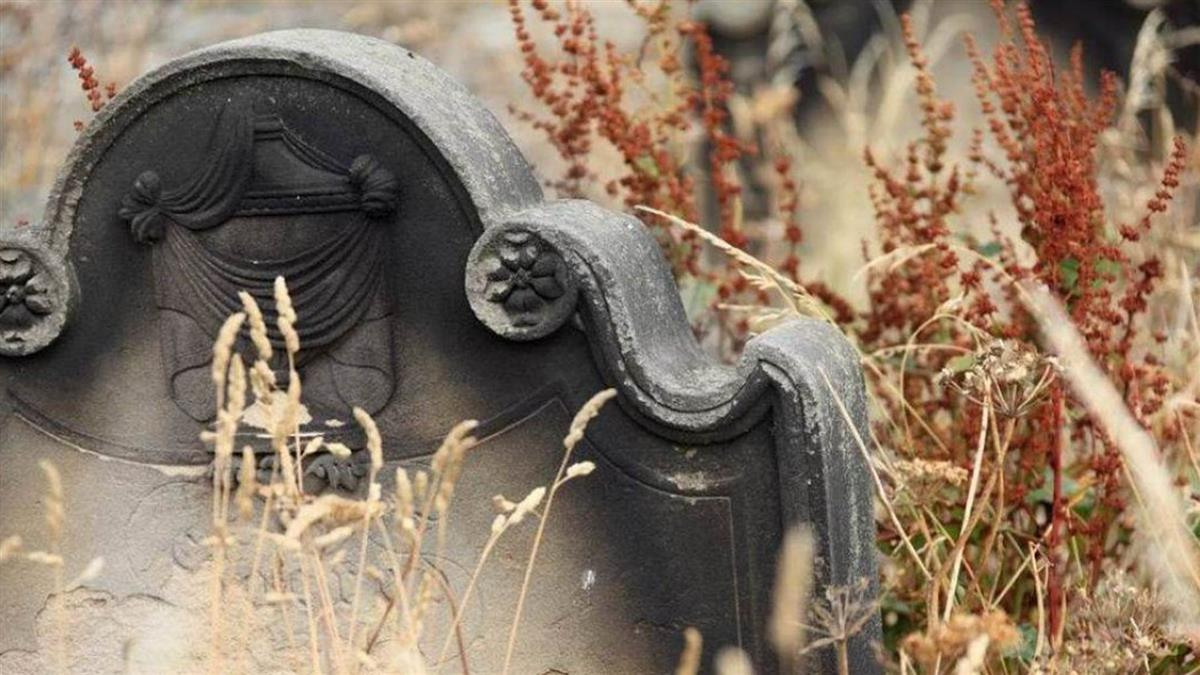 扯!母葬錯墓…父被氣死 墓園:挖出重葬