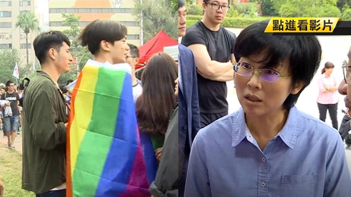 同婚專法拚5月17日過關 藍綠決戰立院表決