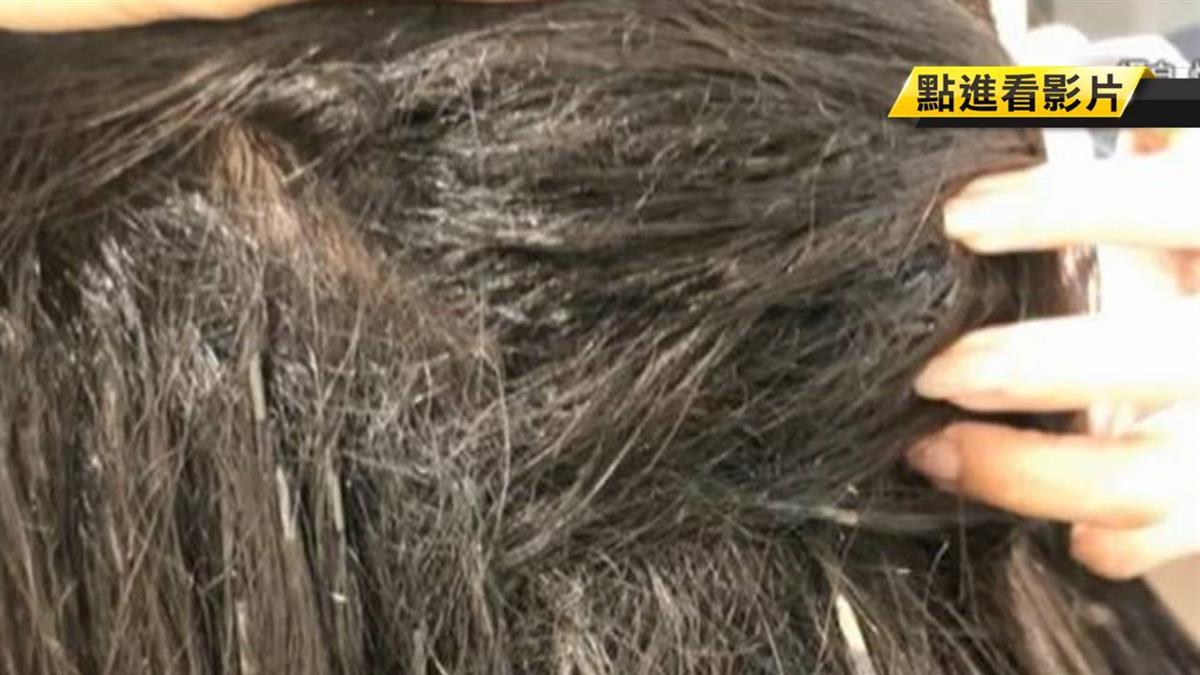 花1.5萬接髮!她洗完頭變鳥巢頭…慘損失2萬元