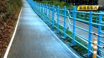 獨/河濱公園欄杆上色 周遭草皮也染藍