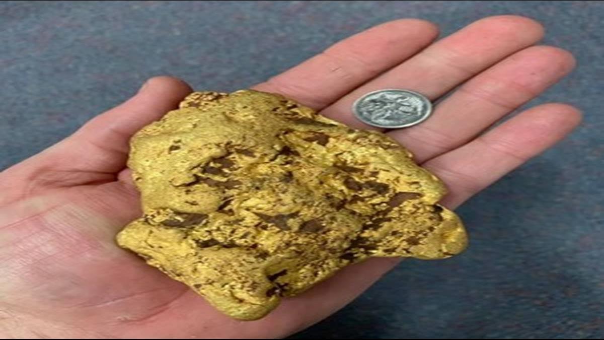 重1.4kg價值200萬!澳男淘金挖到手掌大金塊