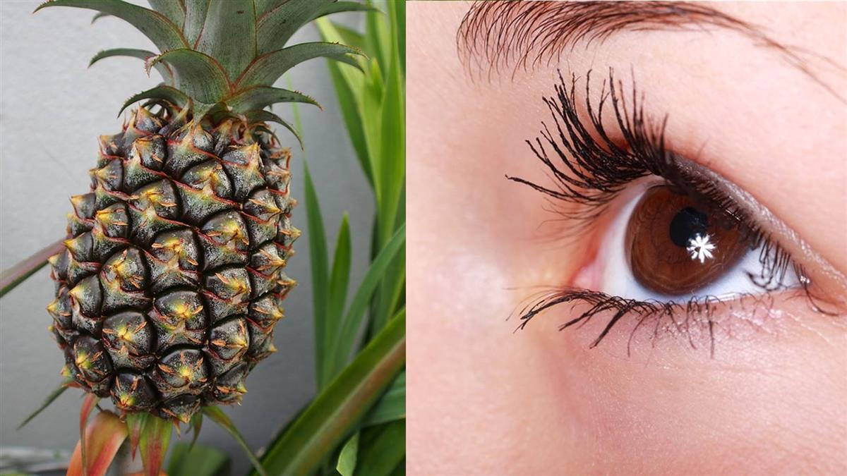 飛蚊症掰掰!台研究:吃鳳梨減少症狀7成