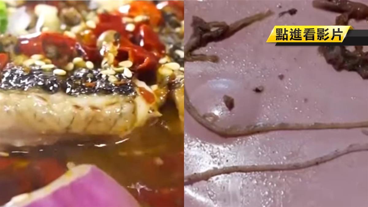 獨/吃烤魚PO文控有肺線蟲 店家:是魚腥線非蟲