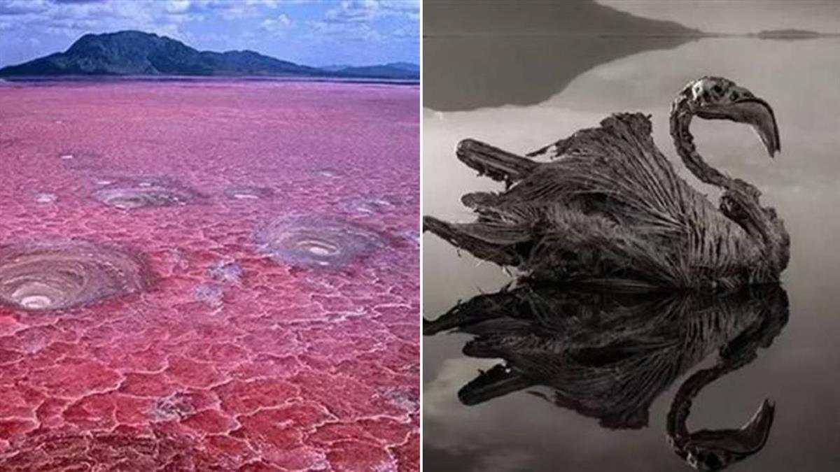 地球的冥湖!鮮紅血湖奪命無數 一碰成乾屍