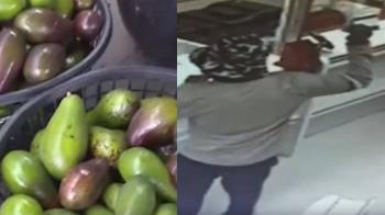以色列男用酪梨搶銀行 連搶兩家入袋24萬
