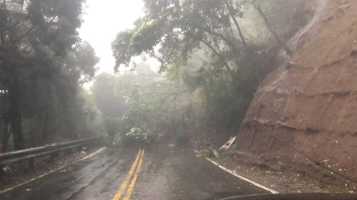 南投大雨土石崩塌!樹連根拔起險砸車