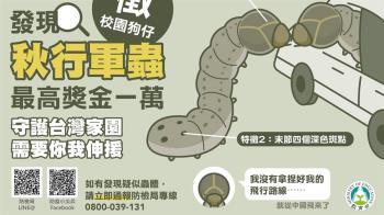防秋行軍蟲文宣…阿翔衰躺槍:沒拿捏好飛行路線