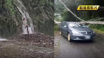 苗栗雨災!苗17線路樹壓車頂 駕駛受傷送醫