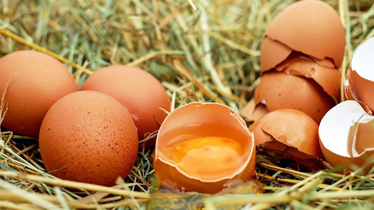 村長7歲孫買雞蛋回家全破 真相曝光慘挨藤條
