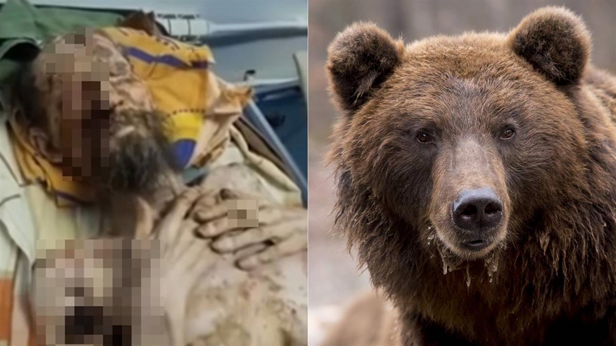 被棕熊擄走當存糧!他如喪屍存活1個月