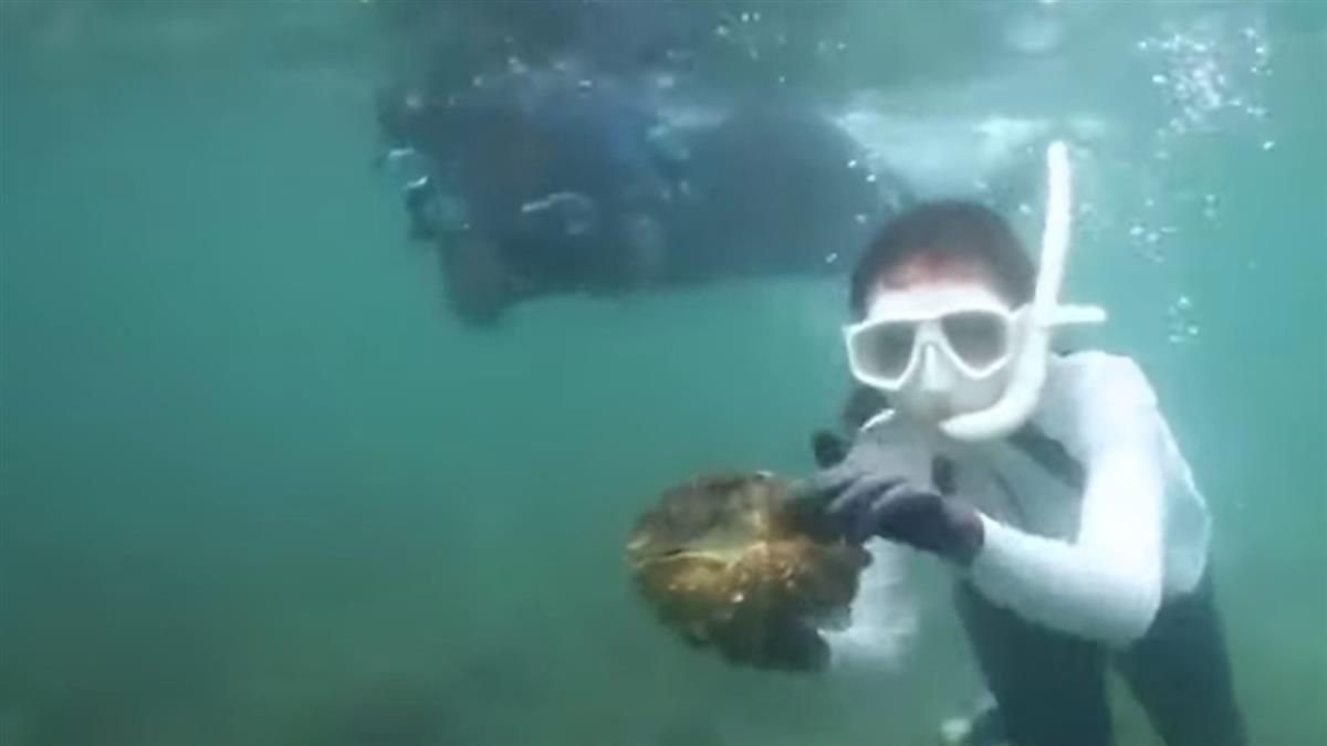 潛水捕巨蚌!女星爽喊抓到了 恐面臨5年徒刑
