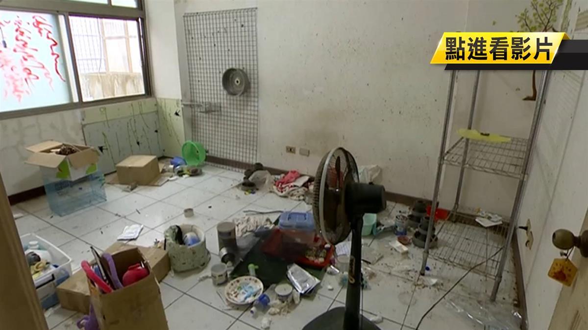 出租整棟遭毀!蟲爬滿地如垃圾場 屋主氣炸