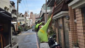 台南確診第9例本土登革熱 左鎮區翁染病