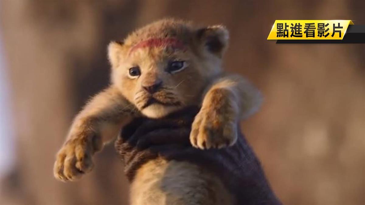 《獅子王》艾爾法伍德達一聽主題曲 神還原高舉辛巴