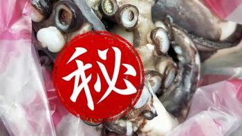 嚇死人!章魚吸盤竟然有牙齒 網友集體崩潰