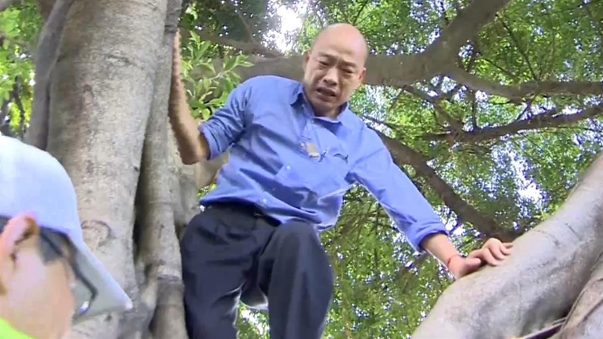 韓國瑜視察登革熱!爬2層樓高樹 嚇壞隨扈