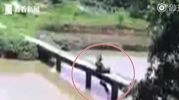騎車過橋…下秒愛犬跳河 父子被扯入溺水慘死
