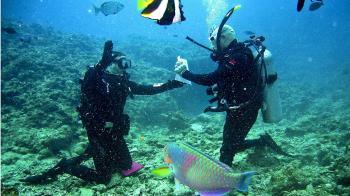 氧氣瓶耗盡!夫與妻共享 離岸50公尺溺水亡