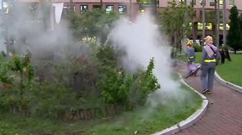 新北爆首例本土型登革熱!疾管署證實了