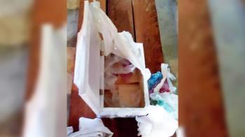 心碎!新生兒夭折…父母開棺竟見爆滿垃圾