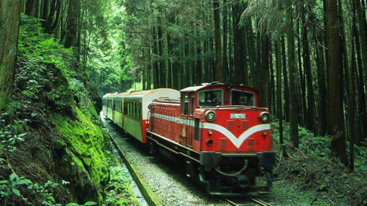土崩鐵軌變形!阿里山鐵路停駛至8月30日