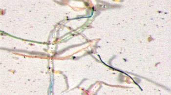 下塑膠雨!美研究曝:雨水內含塑膠微粒