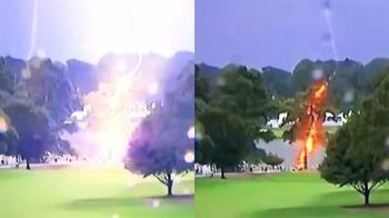 PGA高球巡迴賽 亞特蘭大球場樹遭雷擊…6人傷