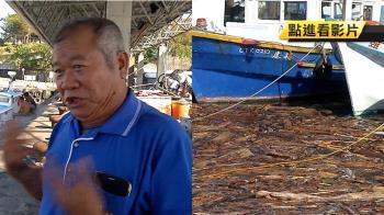 白鹿過境漂流木堆積! 漁民怨:十天後才能出港