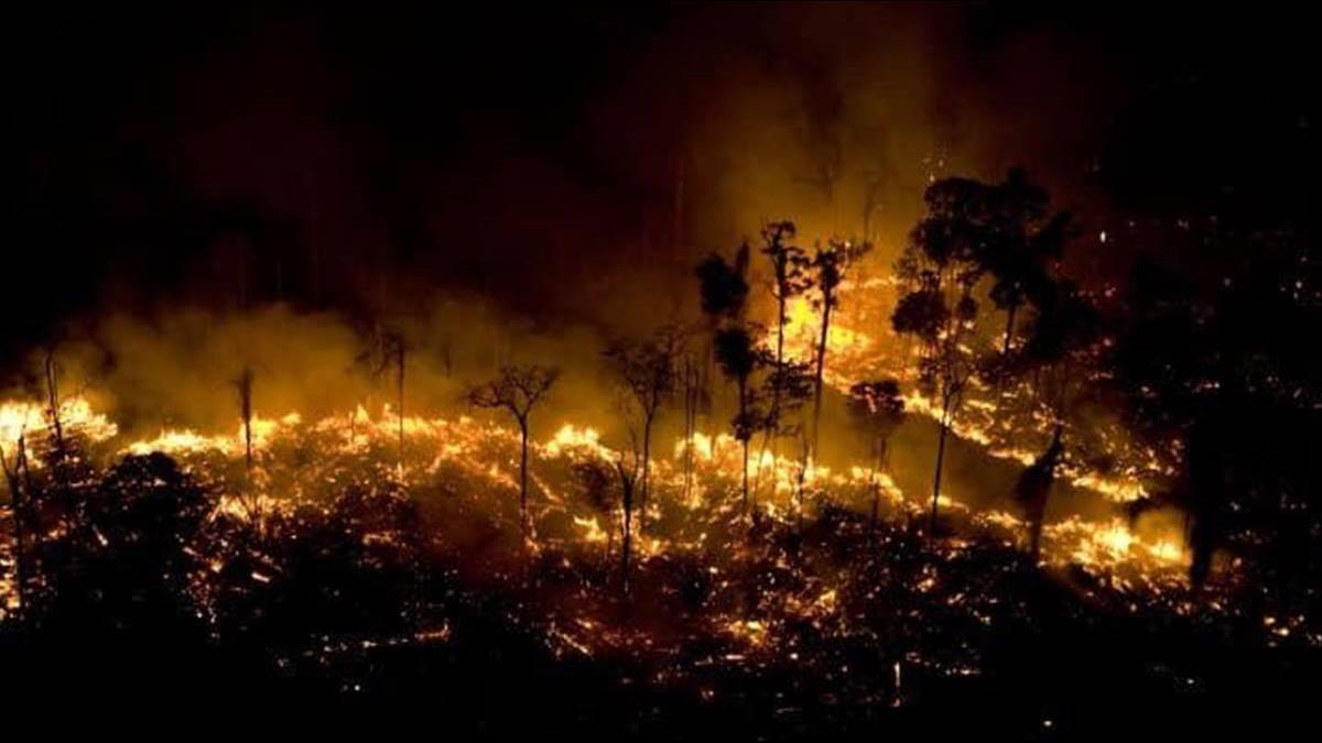 G7金援7億救亞馬遜 巴西總統嗆:此處非屬國際!