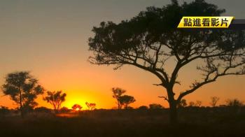 聚焦全世界 全4K超高解析記錄非洲