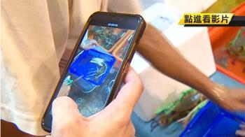 龜吼宅配萬里蟹 裝箱全程拍影片避爭議