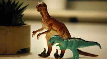 發現新種恐龍!骸骨完整 命名神威龍