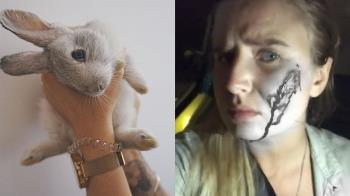 動保女臉爆血 闖農場救16隻兔!反害90幼兔死