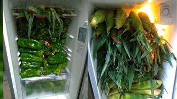 中秋烤菜冰箱全是青椒 網友:蠟筆小新地獄