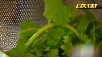 小吃業苦哈哈!香菜價暴漲 一斤最貴280元