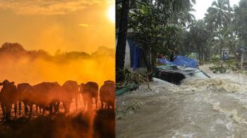 地表最大火災 近5年史上最熱!世界末日倒數中?