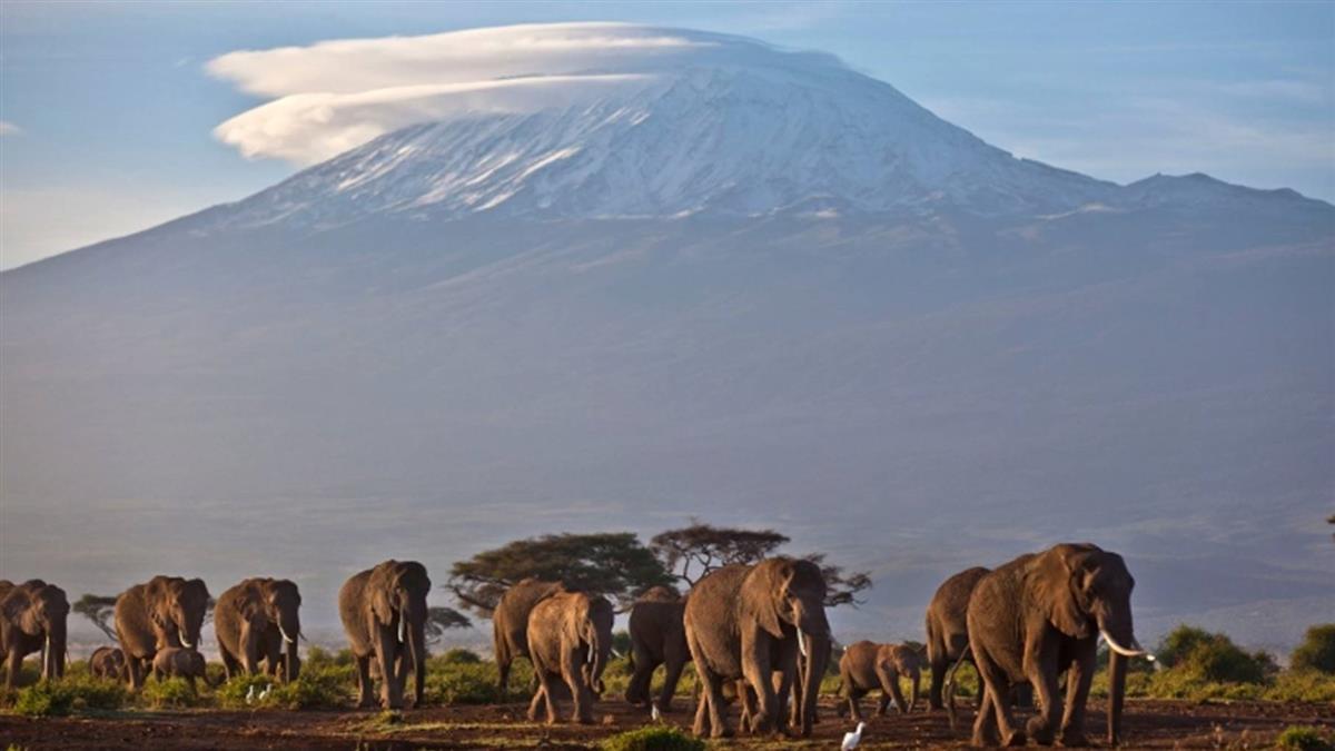 降落傘沒開!加國觀光客命喪非洲最高峰