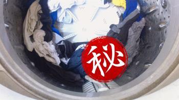 洗衣機驚見生物!翻肚洗泡泡浴 他崩潰:誰敢穿