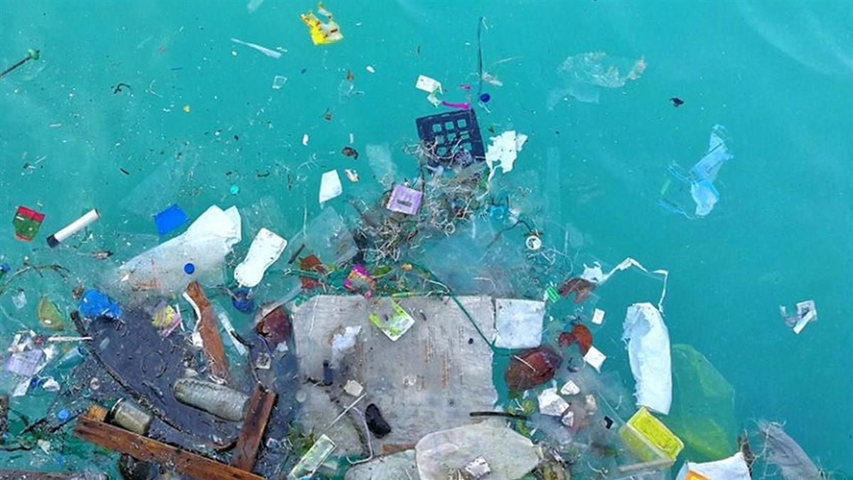 傻眼!韓國市長倒1噸垃圾進海灘 真相超難堪