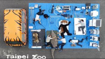 開箱挑戰燒不停!動物園、總統府皆參戰