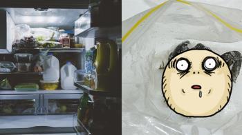 開冰箱驚見青蛙!媽回:路邊撿的…結局超驚悚