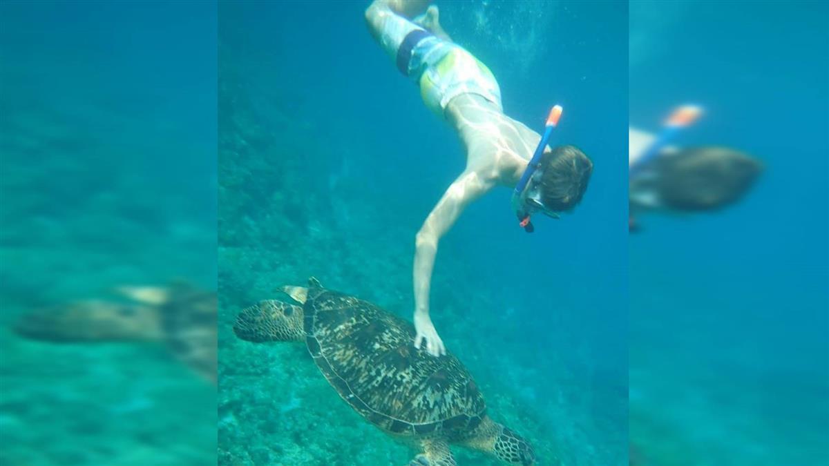 小琉球浮潛摸海龜!德少年遭送辦 自由行泡湯