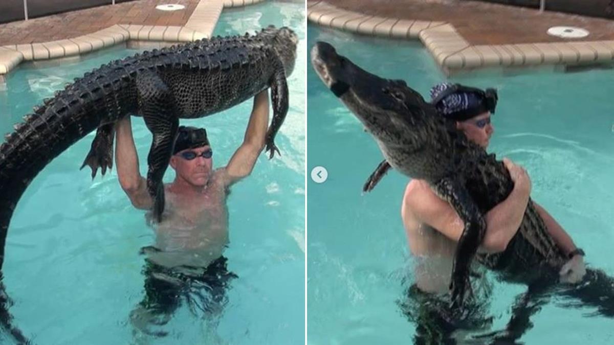 鱷魚殺手!他下水親3次…3米巨鱷秒遭制伏
